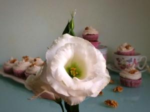 cupcakeszanahoria9